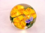 Salazar - Golden Clematis with Butterfly Paperweight
