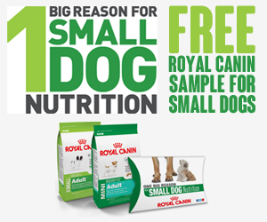 Get a Free Sample of Royal Canin for Small Dogs