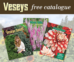 Get a Free Verseys Catalogue