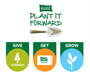 Free Pack of Seeds from Kashi
