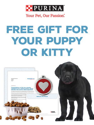Free Gift for your Puppy or Kitty