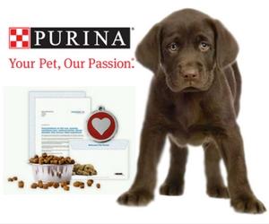 Purina-Puppy