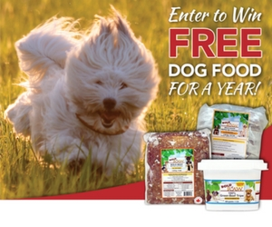 Win a 1-Year Supply of Bold Raw Dog Food