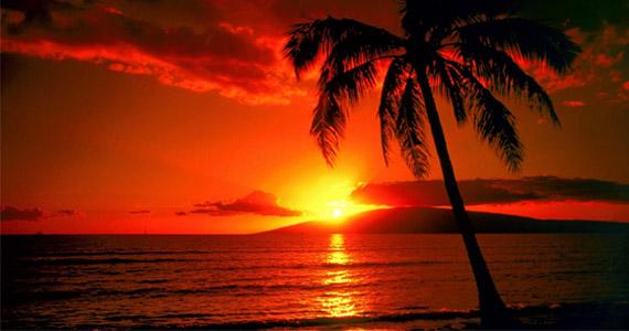 Win a Hawaiian Vacation For 2