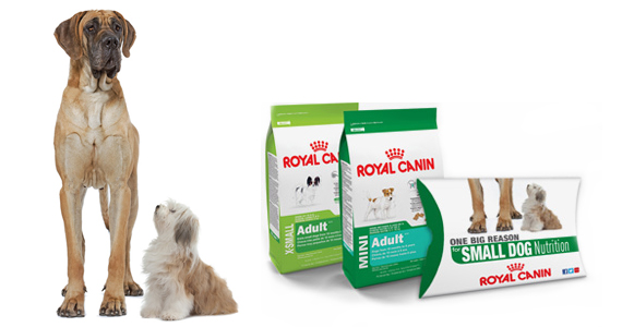 Free Royal Canin Sample for Small Dogs