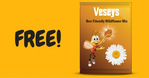 Free Veseys Wildflower Seeds From Cheerios
