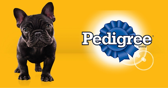 Sign Up With Pedigree For Special Offers