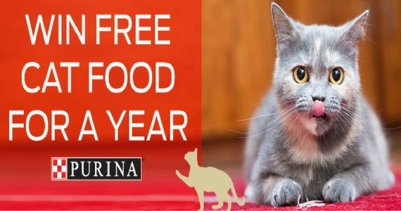 Win Free Purina Cat Food For A Year