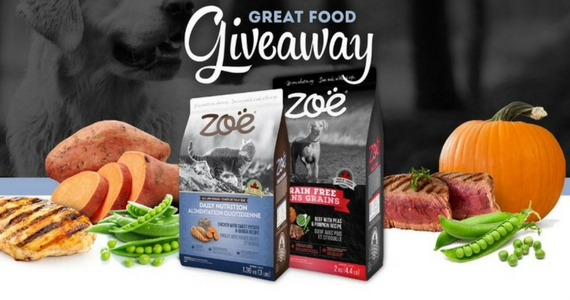 Win 6 Months of Free Zoe Dog or Cat Food