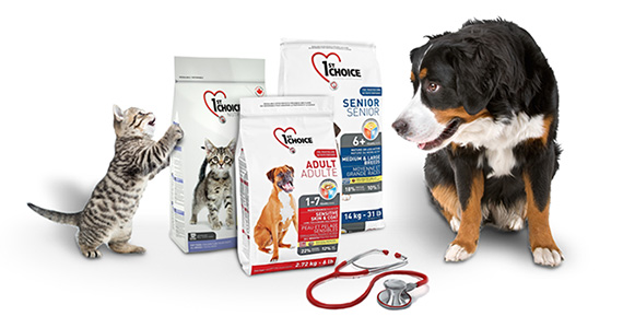 Win a 1 year Supply of 1st Choice Dog Food