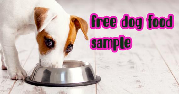 Home Tester Club – Free Dog Food Sample