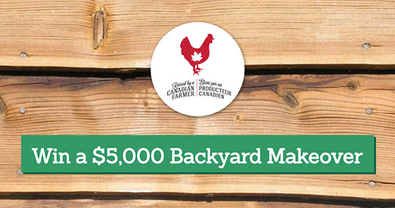 Win $5,000 from Chicken Farmers of Canada