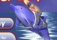 Imagen del juego: El Delfín laser