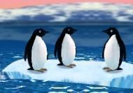 Pingüinos - Turbochargued Penguins!