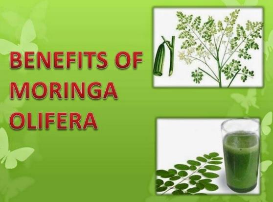 17 Proven White Tea Benefits That Will Surprise You 17 Proven White Tea Benefits That Will Surprise You new photo