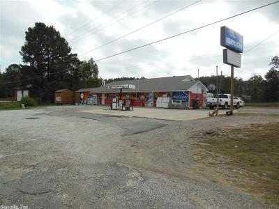 Commercial For Sale: 4080 Hwy 290