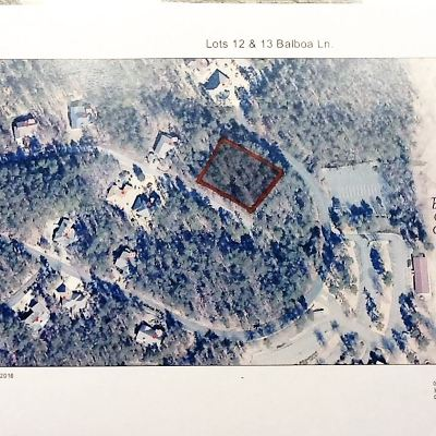 Hot Springs AR Residential Lots & Land Active - Price Change: $10,000