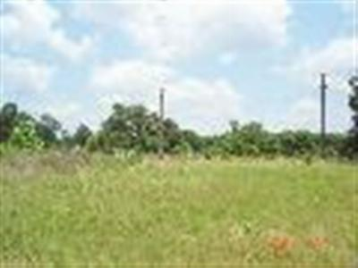 Residential Lots & Land For Sale: S Hwy 59