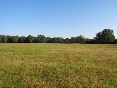 Dekalb TX Residential Lots & Land For Sale: $49,000