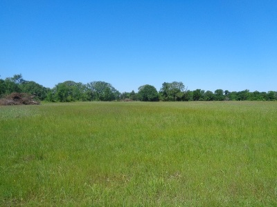 New Boston TX Residential Lots & Land For Sale: $36,000