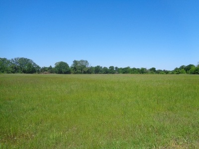 New Boston TX Residential Lots & Land For Sale: $54,000