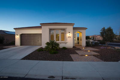 Single Family Home For Sale: 12768 W Desert Vista Trail