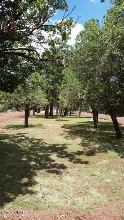 Lakeside AZ Residential Lots & Land For Sale: $24,900