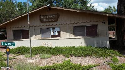 Lakeside AZ Commercial For Sale: $194,900