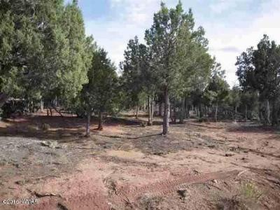 Show Low AZ Residential Lots & Land For Sale: $69,000