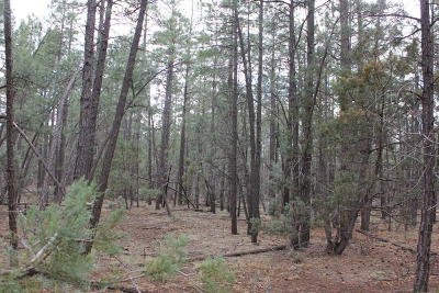 Lakeside AZ Residential Lots & Land For Sale: $49,850