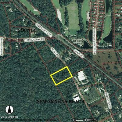 New Smyrna Beach FL Residential Lots & Land For Sale: $225,000