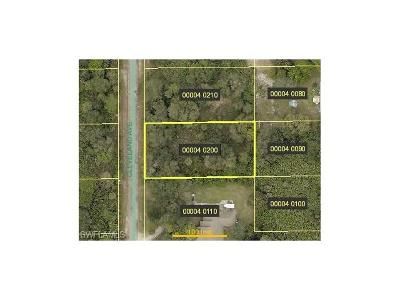 Residential Lots & Land For Sale: 410 Cleveland Ave