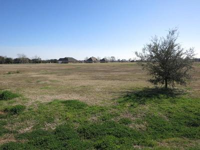 Residential Lots & Land For Sale: 271 St Jerard Avenue