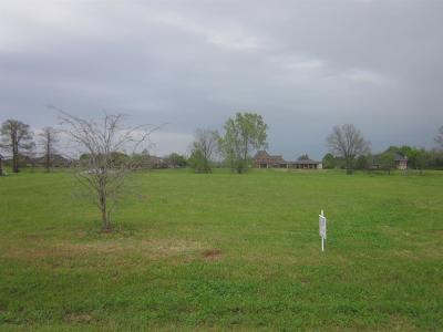 Residential Lots & Land For Sale: 220 St. Jerard