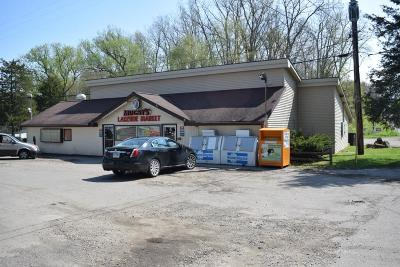Clarklake MI Commercial/Industrial For Sale: $299,900