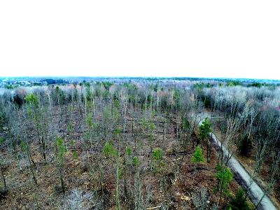 Menominee MI Residential Lots & Land For Sale: $38,500