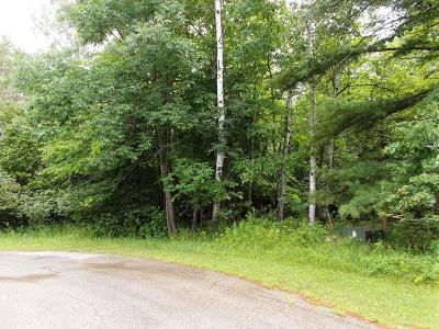 Menominee MI Residential Lots & Land For Sale: $39,000