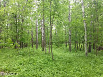 Bemidji MN Residential Lots & Land For Sale: $65,000