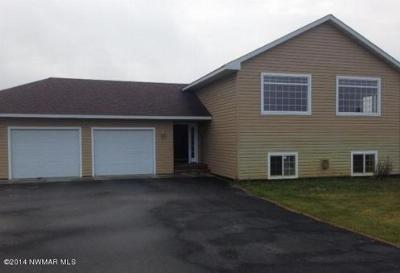 Bemidji MN Single Family Home Sale Pending: $175,000