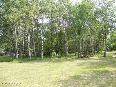 Bemidji MN Residential Lots & Land For Sale: $22,500