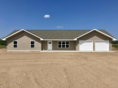 Bemidji MN Single Family Home For Sale: $177,400