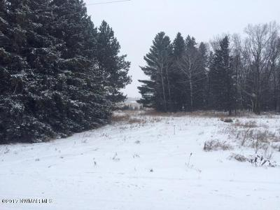 Bemidji MN Residential Lots & Land For Sale: $29,900