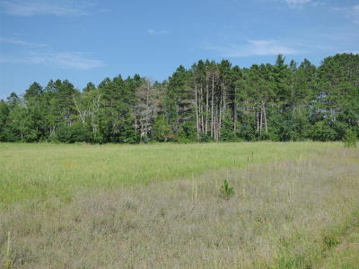 Bemidji MN Residential Lots & Land For Sale: $22,900