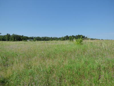 Bemidji MN Residential Lots & Land For Sale: $24,900