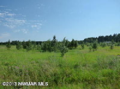 Bemidji MN Residential Lots & Land For Sale: $20,900
