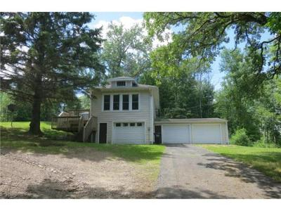 Grey Eagle MN Single Family Home For Sale: $349,999