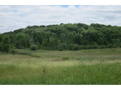 Long Prairie MN Residential Lots & Land Sold: $200,000