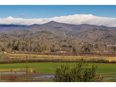 Pisgah Forest NC Residential Lots & Land For Sale: $99,900