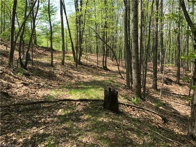 Arden NC Residential Lots & Land For Sale: $69,000