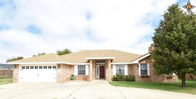 Single Family Home For Sale: 304 Olive